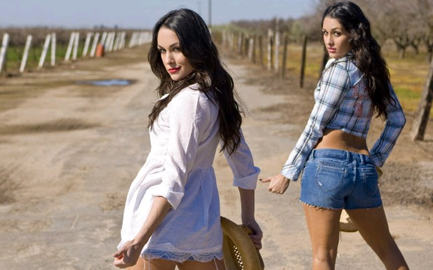 watch free sexy girl: WWE Divas Bella Twins Nude Pic