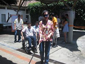 Simulacion Discapacidades