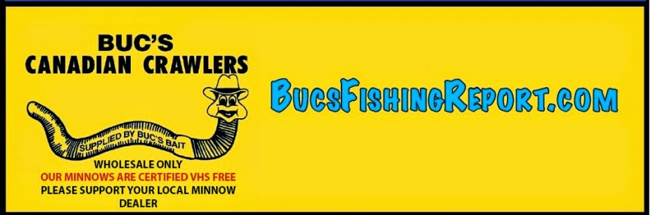 Bucs Fishing Report