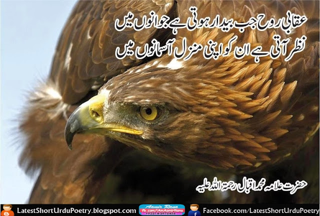 Allama Iqbal Urdu Shayari