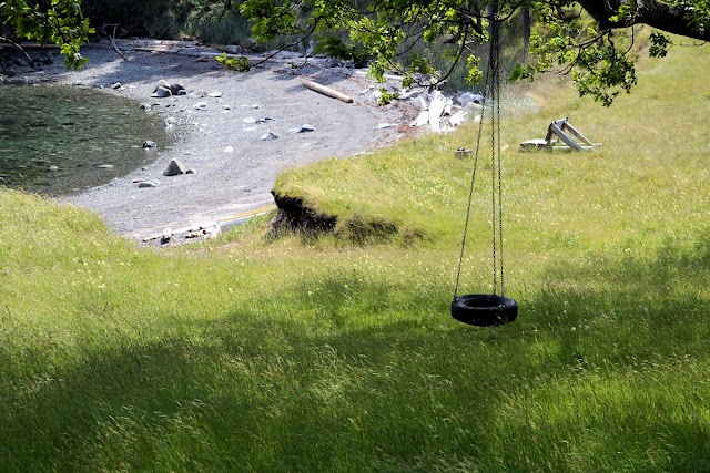 photo of a tire swing on Johns Island by Nancy Zavada
