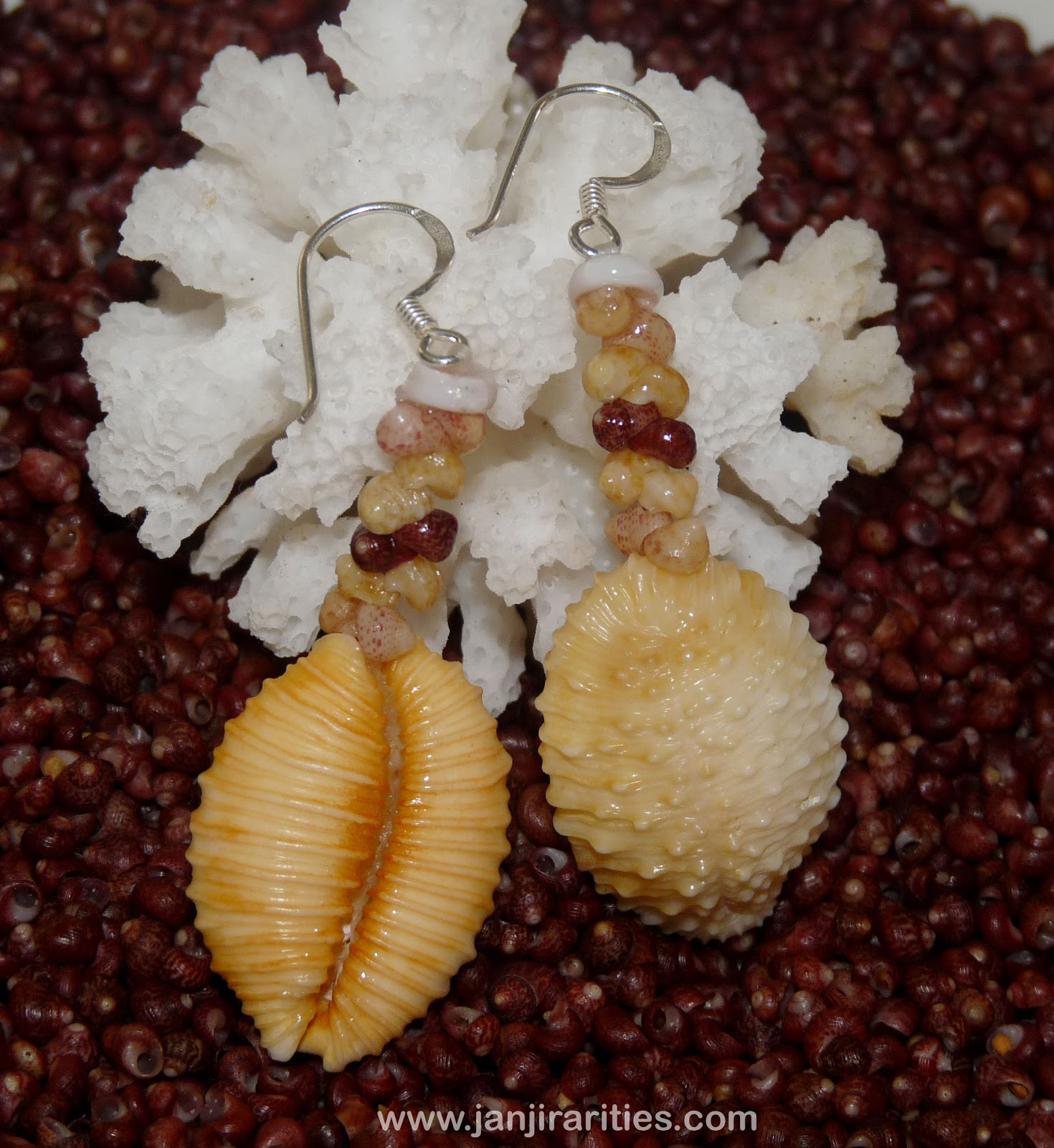 Hawaiian Granulated Cowrie Shell Earrings