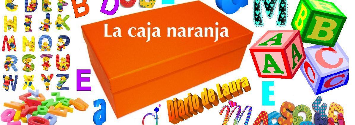 LA CAJA NARANJA: Diario de Laura
