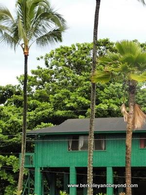 house on stilts in Hanalei, Kauai, Hawaii