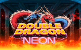 Double Dragon Neon PC Games