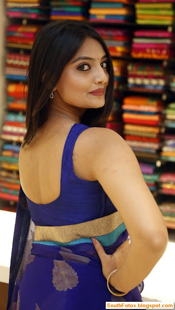 Nikitha Narayan in Saree Photos