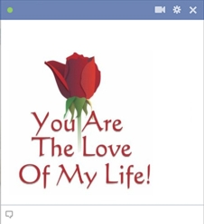 you are the love of my life Emoticon Facebook Terbaru