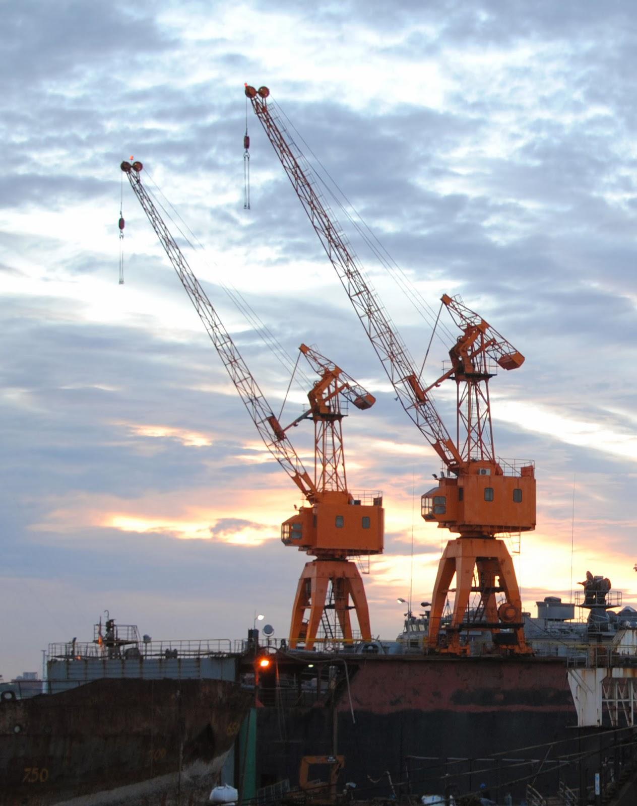 Mar del Plata Cranes