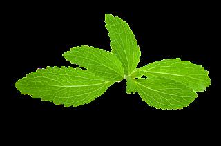pemanis stevia
