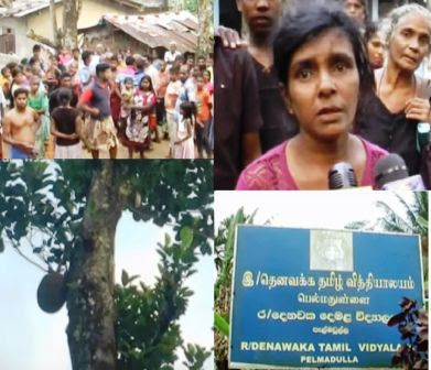 Child falls from Jack tree, dies gossip lanka sinhala news