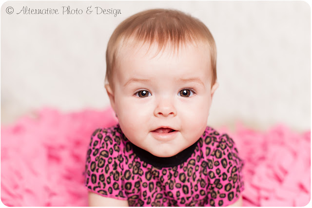 Sweet {S} 6 Month Session | Baby Photographer | Janesville Wisconsin