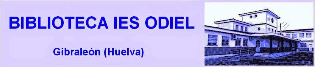 BIBLIOTECA IES ODIEL