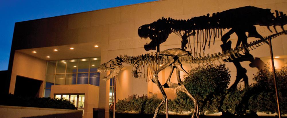 Aunty belle 39 s front porch holy t rex Dinosaur museum ohio