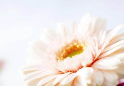 悟覺妙天師父的力量真的很慈悲 無限寬廣的給予每個人..