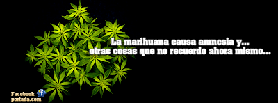 Legality of cannabis - Wikipedia, the free encyclopedia