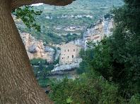 El monestir de Sant Miquel del Fai des del roure centenari