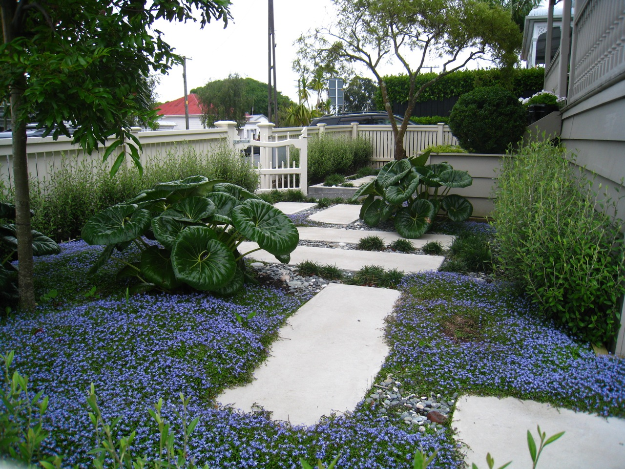 Garden design auckland landscape designer kirsten sach for Create landscaping ltd