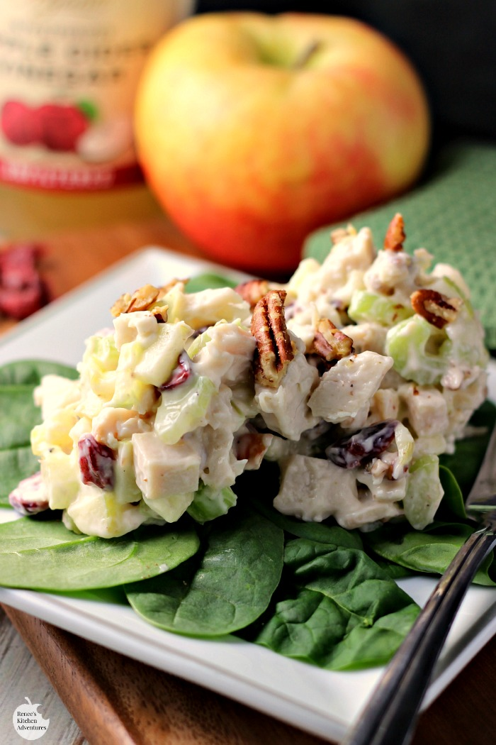 Turkey Apple Cranberry Pecan Salad | by Renee's Kitchen Adventures - an easy, healthy recipe for turkey salad. Makes a great lunch or dinner.  Perfect way to re-purpose holiday leftovers!