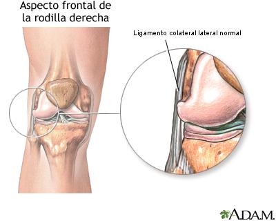 Jr c zar joelho les es principais formas de tratamento e - Dolor en la parte interior de la rodilla ...