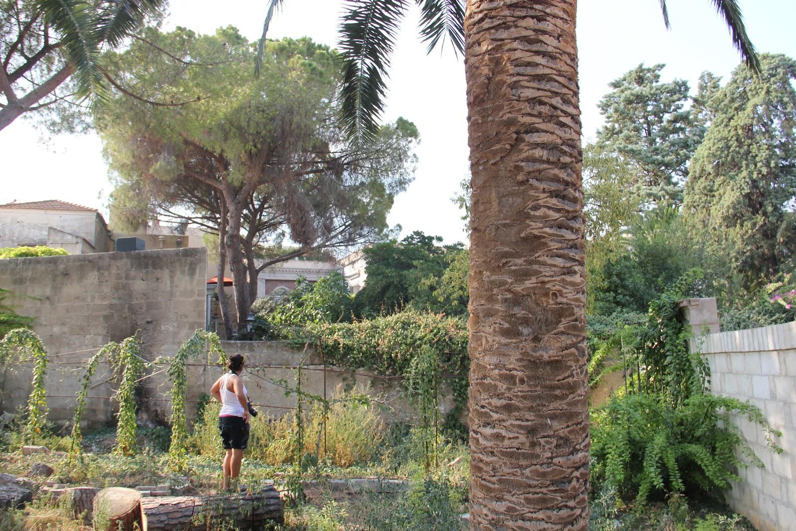 http://4.bp.blogspot.com/-D_IiWVV8dr4/Tmpp4ZfwuDI/AAAAAAAAJt8/G7WtJPe3sEA/s1600/11+Assalto+al+giardino+Bernalda+27-08-11.JPG