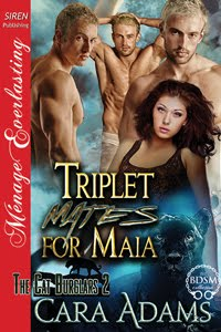 Triplet Mates for Maia