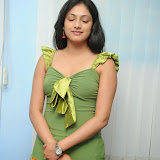Hari Priya Latest Exclusive Hot Photos (34)