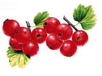 Goji Berry - Makanan Penyubur Sperma