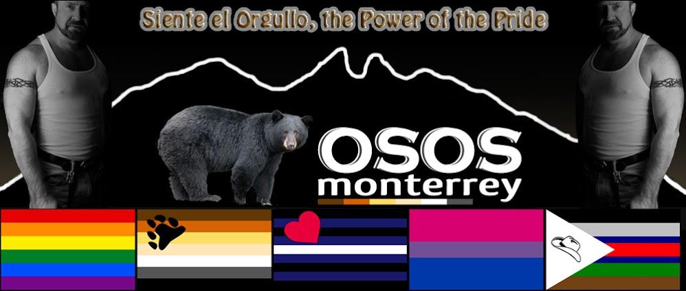 Osos Monterrey