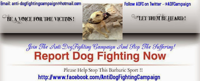 https://www.facebook.com/AntiDogFightingCampaign