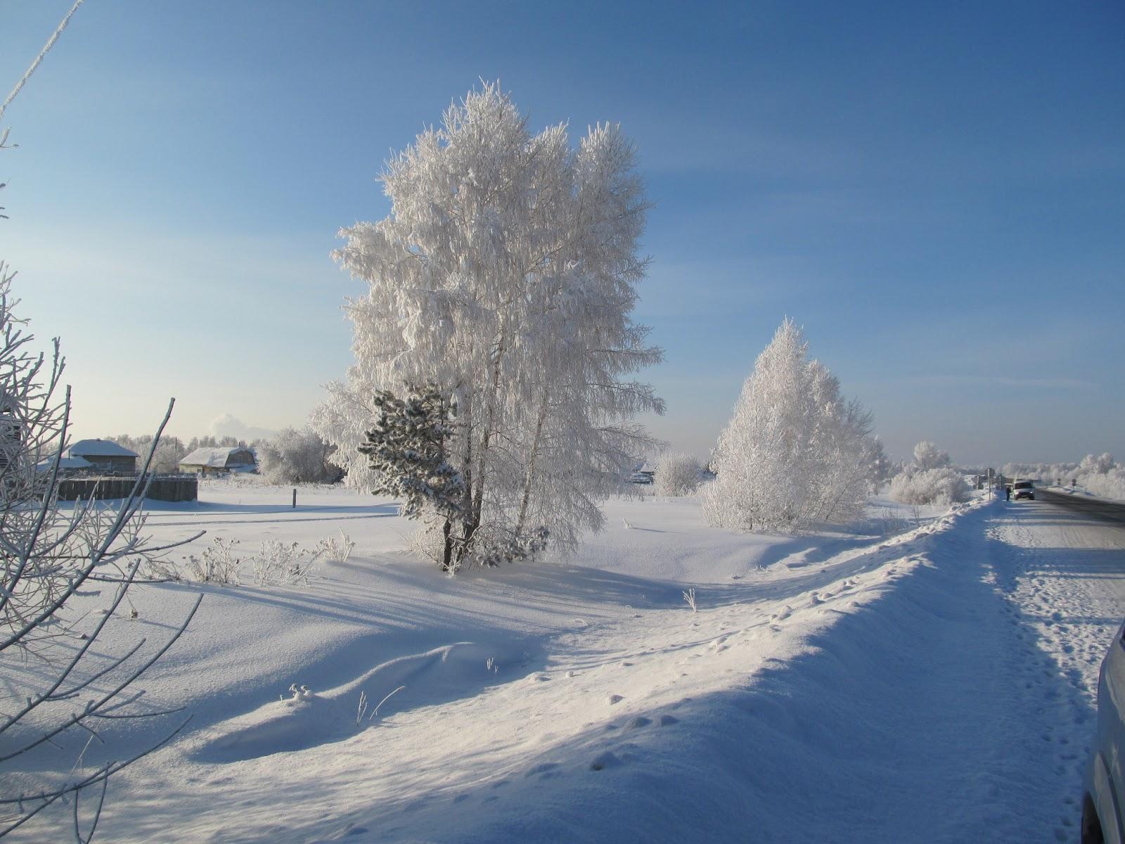 за городом зимой