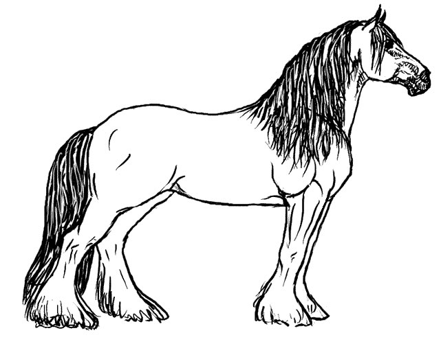 Horse Drawing Coloring Child Coloring