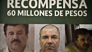 """Ofrecen 60 millones de pesos como recompensa por """"El Chapo Guzmán"""""""
