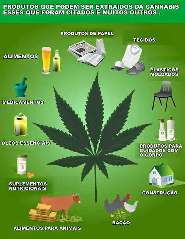 #cannabis um milagre da Natureza!