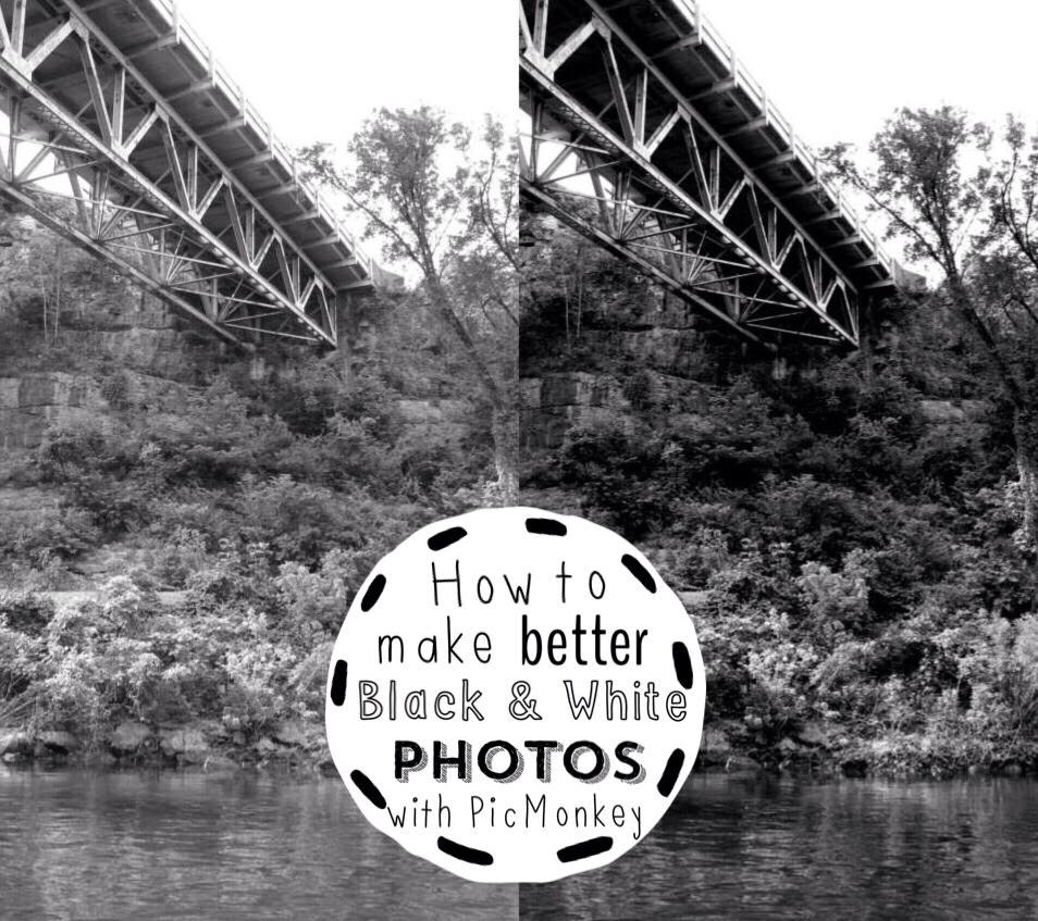 How to make better Black & White Photos with PicMonkey (it's free!)