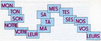 أدوات الملكية فى اللغة الفرنسية Les adjectifs possessifs