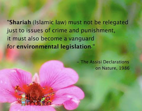 islam environment ethic assisi declaration