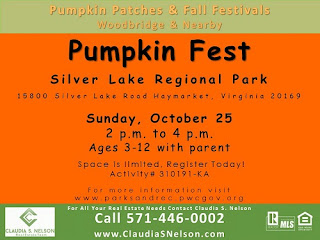 Pumpkin Patches near Woodbridge Virginia 2015, Pumpkin Fest Owl Craft Project at Silver Lake Regional Park VA
