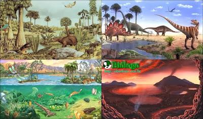eras, geologicas, cambriano, paleozoico, mesozoico, cenozoico