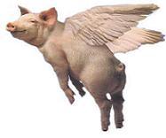 inglés para niños pig flying