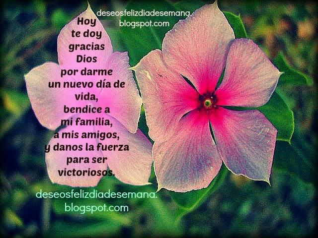 Te doy Gracias Dios por el nuevo día. Gracias Señor por este día, buenos días agradeciendo a Dios, Imágenes, postales cristianas con oraciones para mi facebook, twitter. Tarjetas gratis para etiquetar amigos.