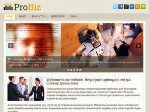 ProBiz - Free Wordpress Theme