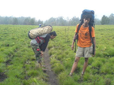 Expedition mount argo puro 3078MDPL