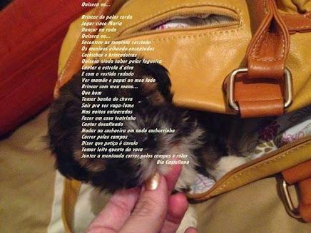 Poema meu...