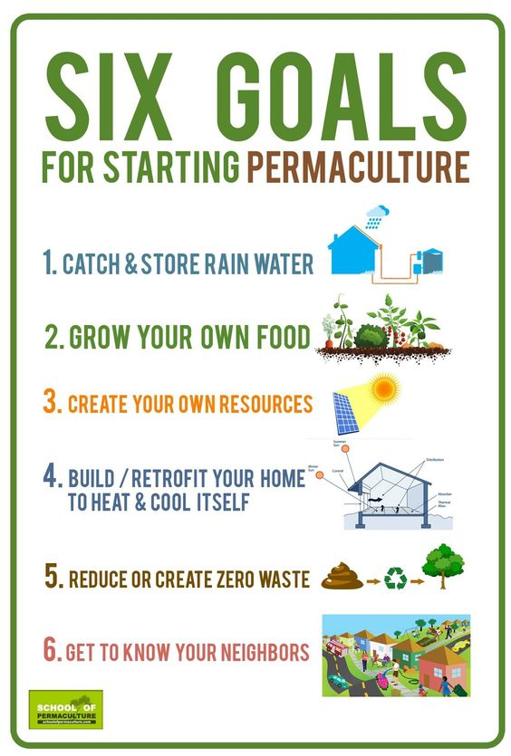 Simple Permaculture Goals