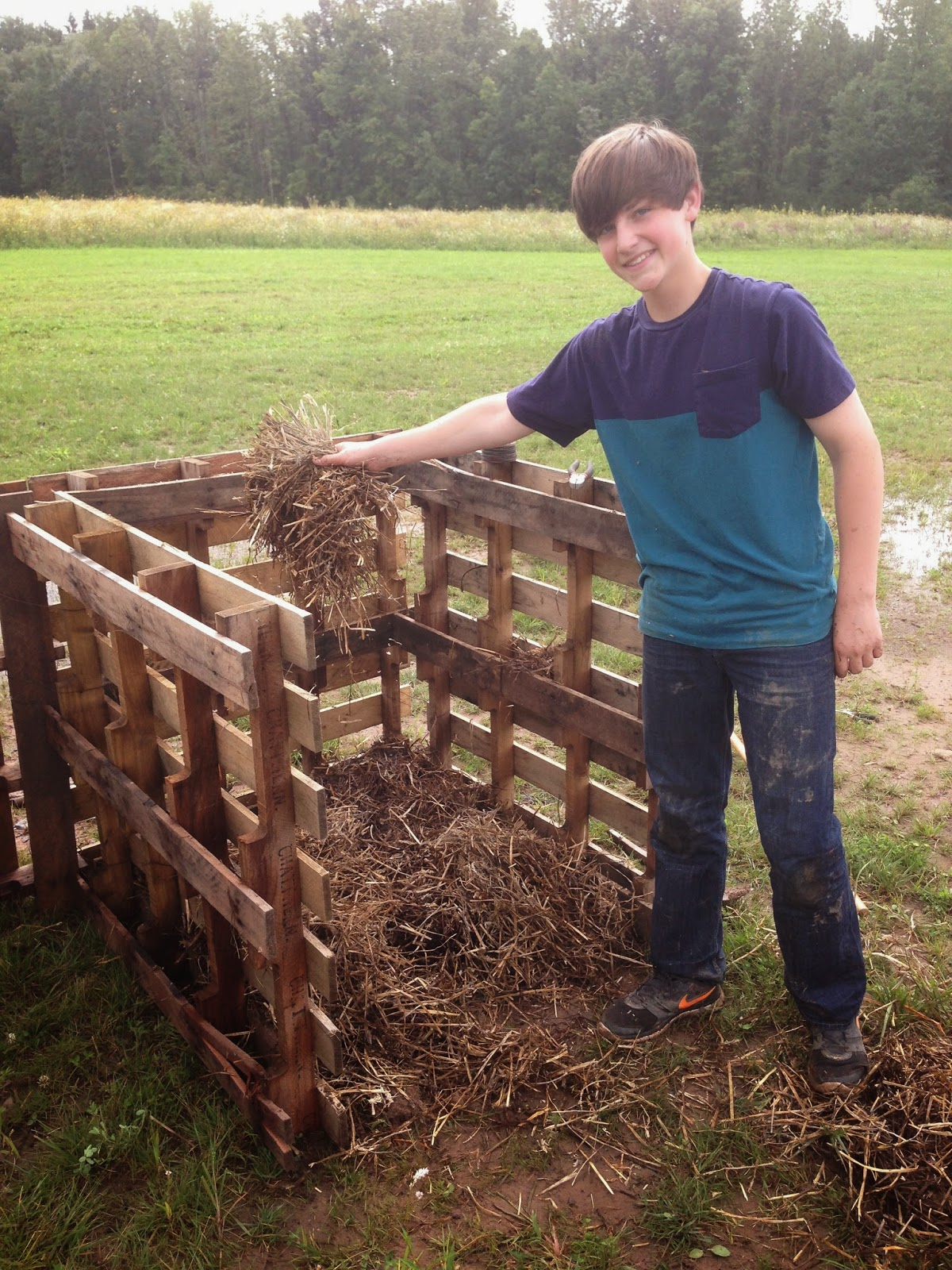 check out schf s new composting system