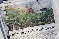 Växjöbladet/Kronobergaren 11 maj 2018