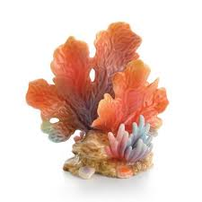 35th Anniversary Gift Coral