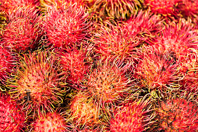 Rambutan z Tajlandii - Kolczasty owoc