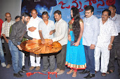 Janmasthanam Audio launch-thumbnail-4
