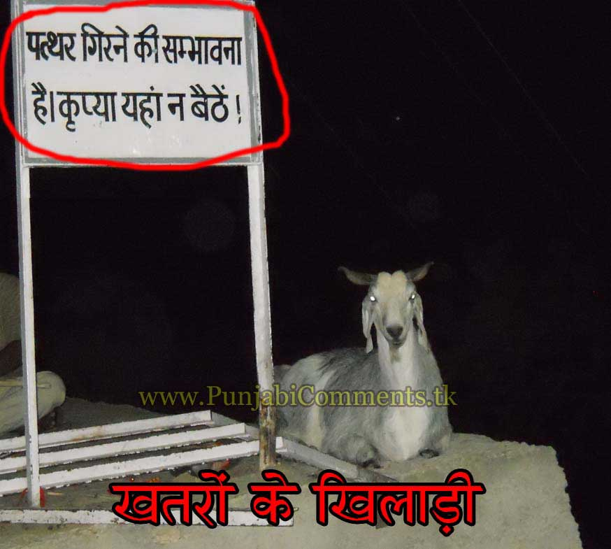 punjabi graphics and punjabi photos new funny hindi